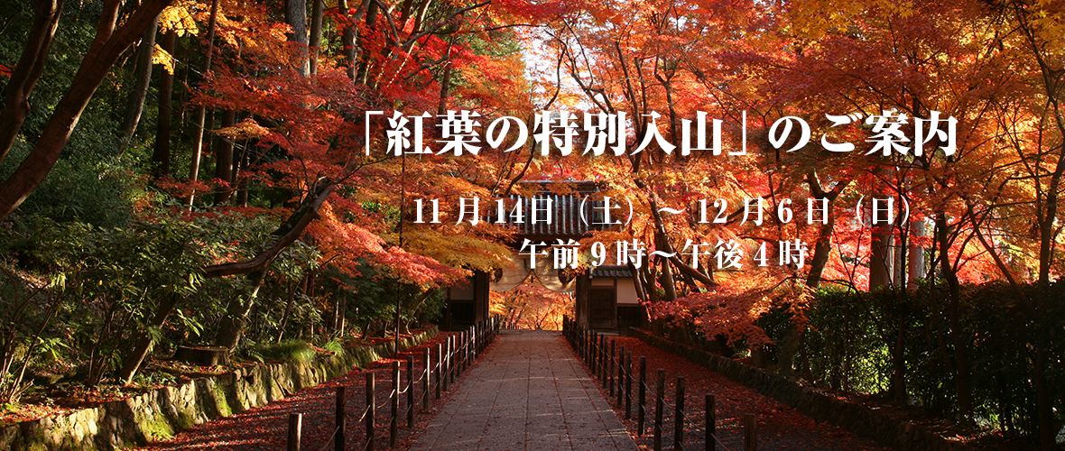 「紅葉の特別入山」のご案内